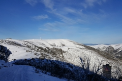 Looking back to the summit of Mt Hotham