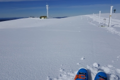 The operating position on Mt Hotham looking back to the communications tower