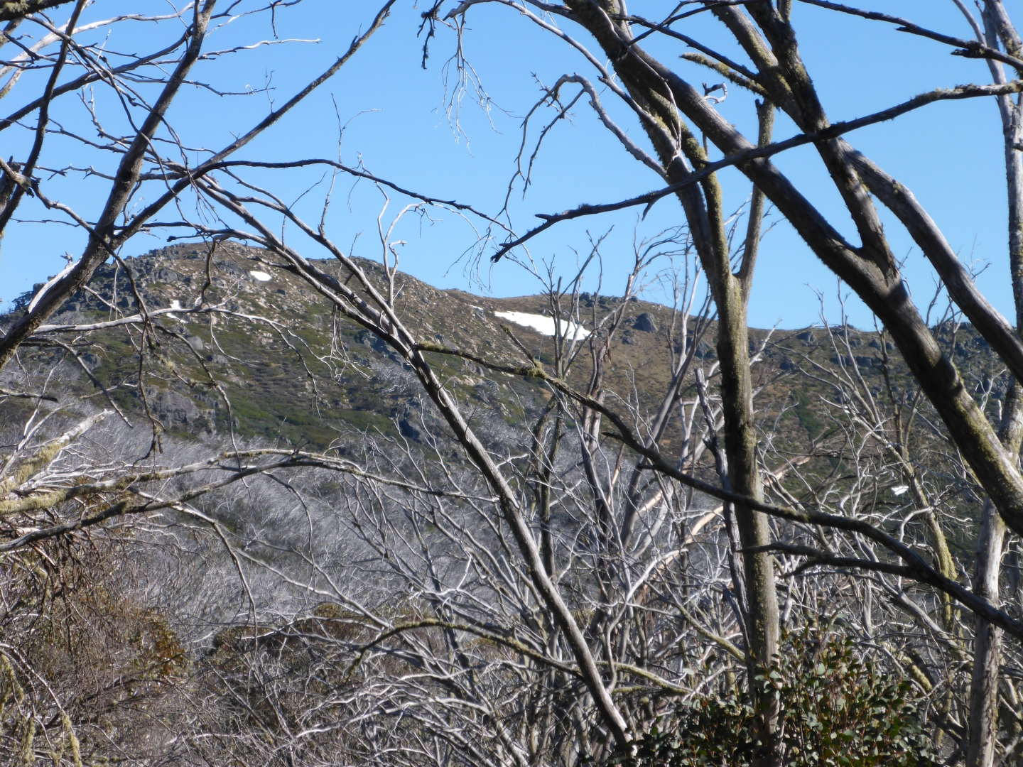 A vestige of snow on the southern flanks of Mt Stirling